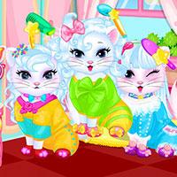 Baby Kitty Hair Salon