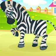 Inimitable Zebra