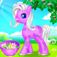 Pony Grooming Salon