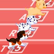 Puppy Racer