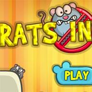 Rats Invasion